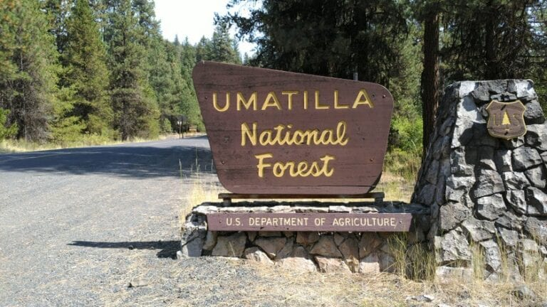 Umatilla National Forest lands in Wheeler County temporarily closed