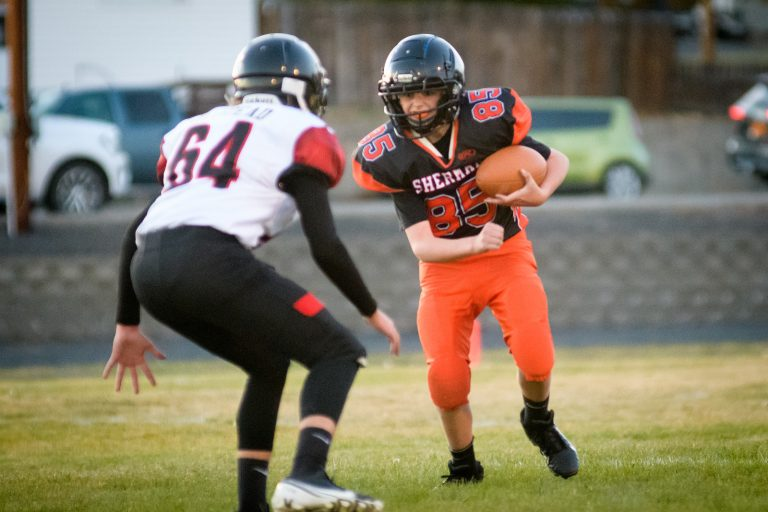 Young Devil Dawgs outmatched by Enterprise Outlaws